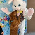 Easter Bunny with Pets and Peeps