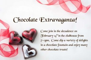 Chocolate Extravaganza!