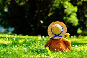 Teddy Bear Picnic - Teddy's Day Out!