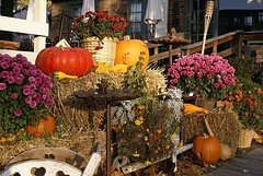 Fall Decorating Contest