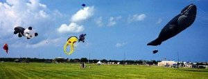 Kite-Flying picnic