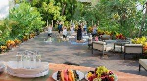 Catch the Wellness Wave - Weekend Wellness Festival