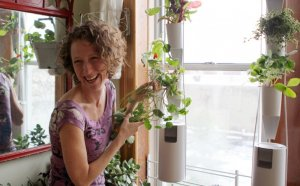 Apartment Garden DIY Project